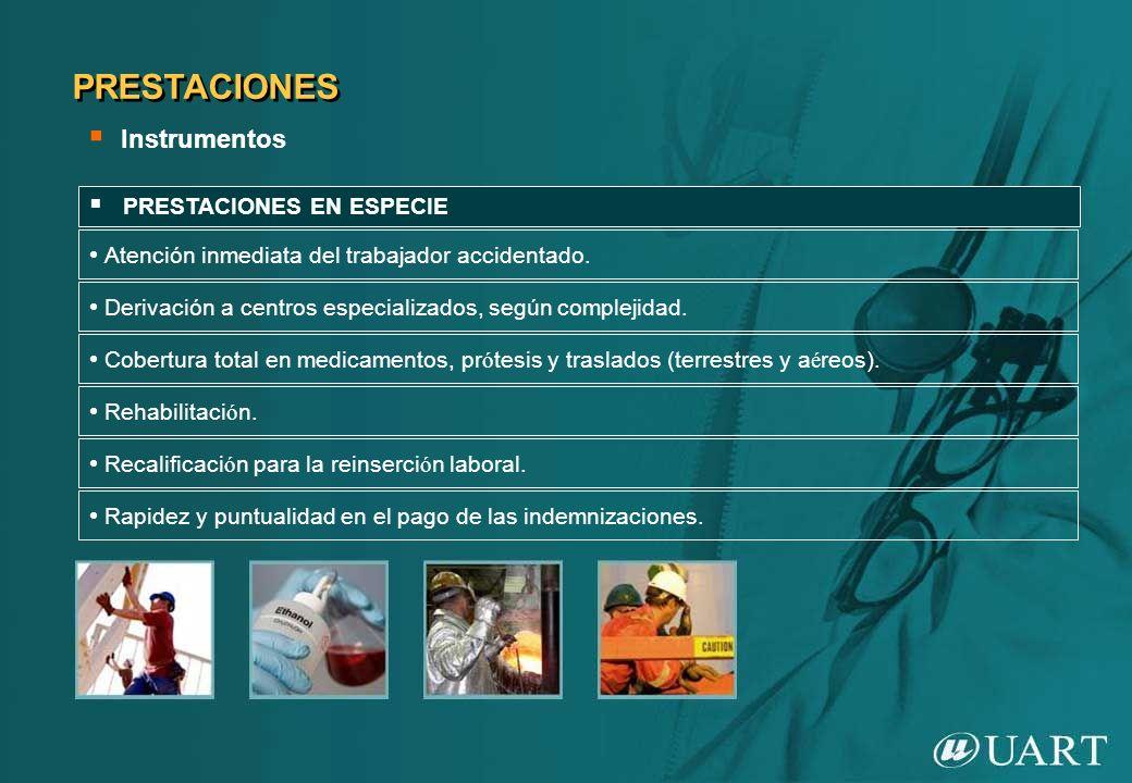 PRESTACIONES Instrumentos PRESTACIONES EN ESPECIE