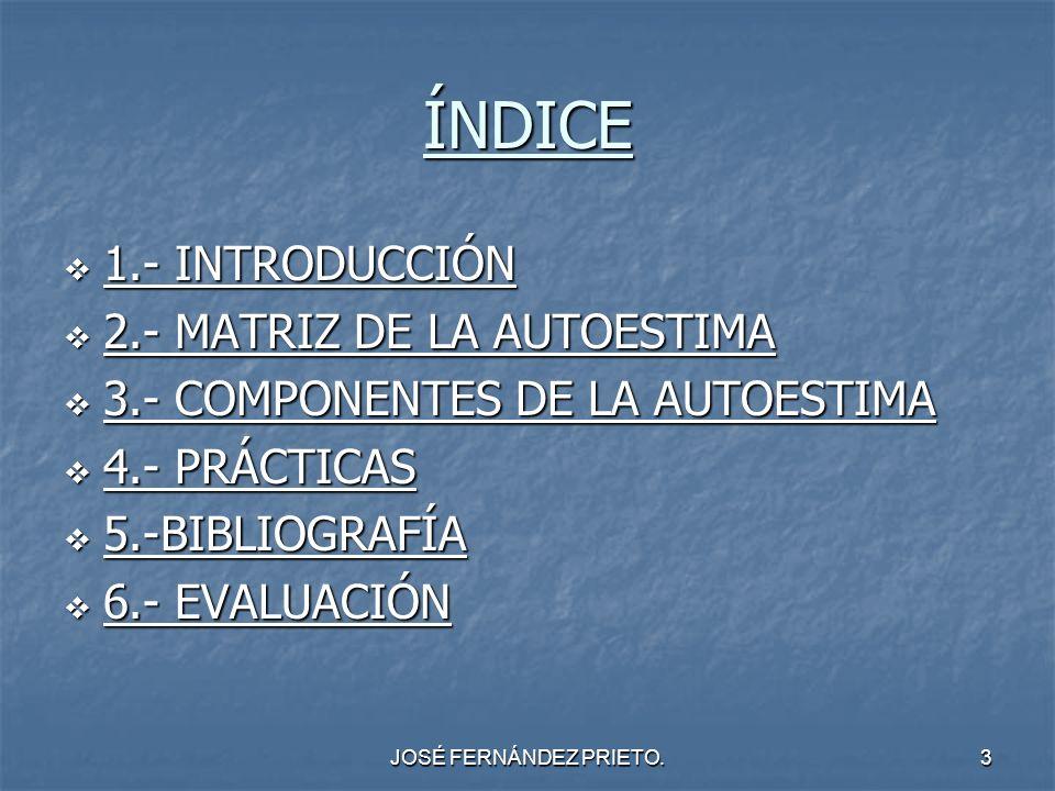 ÍNDICE 1.- INTRODUCCIÓN 2.- MATRIZ DE LA AUTOESTIMA