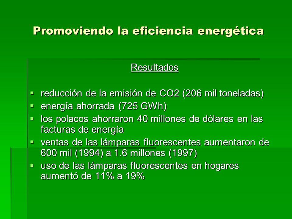 Promoviendo la eficiencia energética