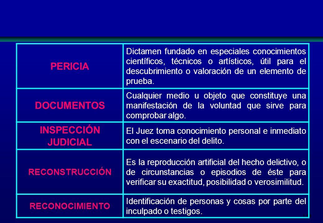 PERICIA DOCUMENTOS INSPECCIÓN JUDICIAL