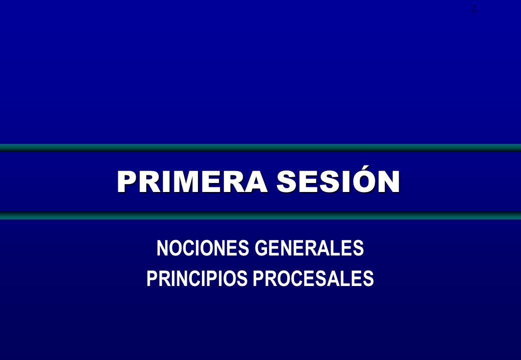 NOCIONES GENERALES PRINCIPIOS PROCESALES