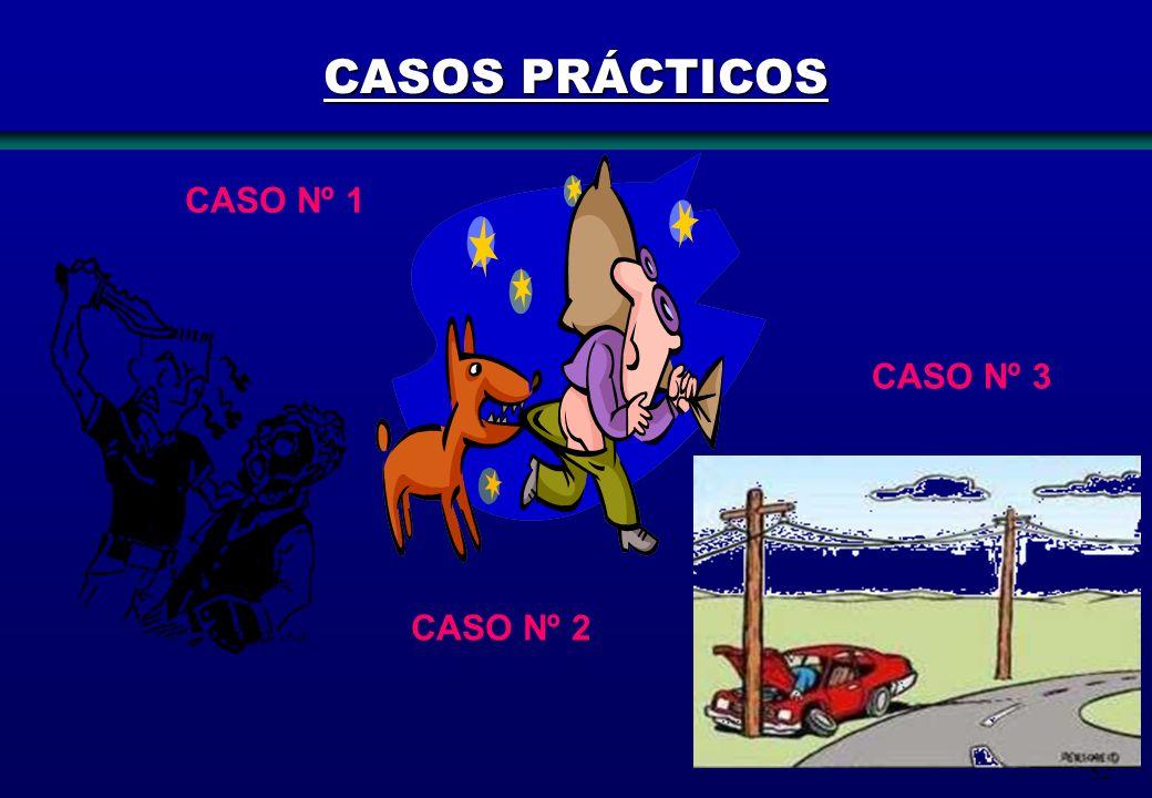 CASOS PRÁCTICOS CASO Nº 1 CASO Nº 3 CASO Nº 2