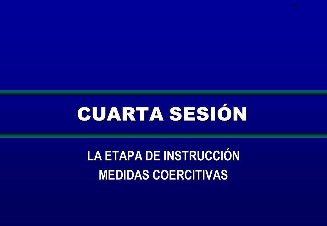 LA ETAPA DE INSTRUCCIÓN MEDIDAS COERCITIVAS