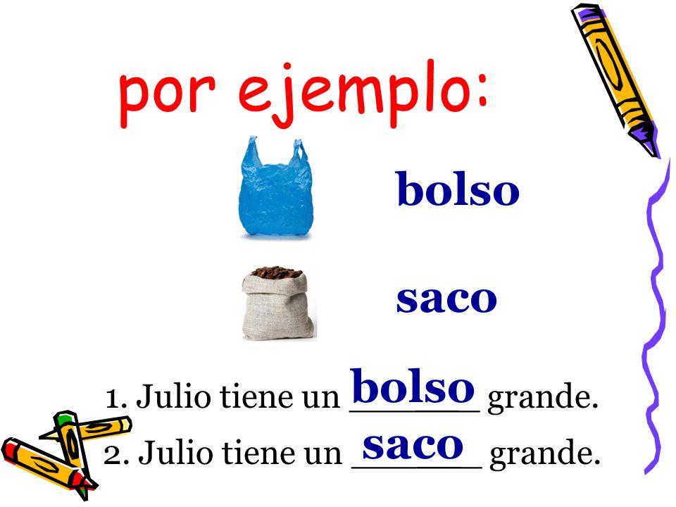 por ejemplo: bolso saco bolso saco 1. Julio tiene un ______ grande.