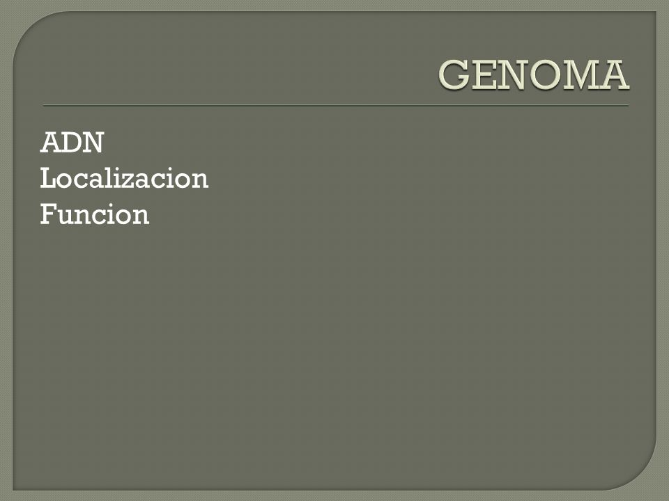 GENOMA ADN Localizacion Funcion