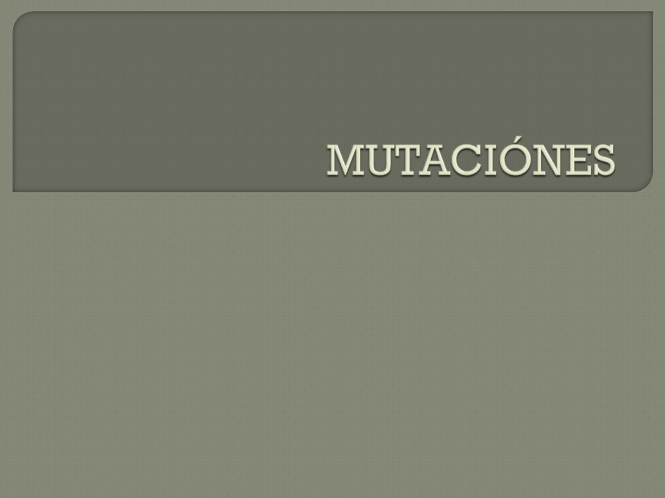 MUTACIÓNES