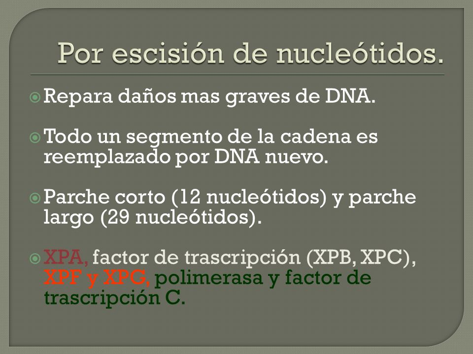 Por escisión de nucleótidos.