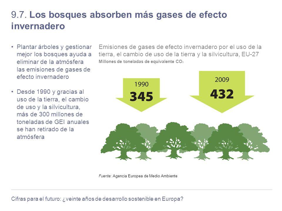 9.7. Los bosques absorben más gases de efecto invernadero