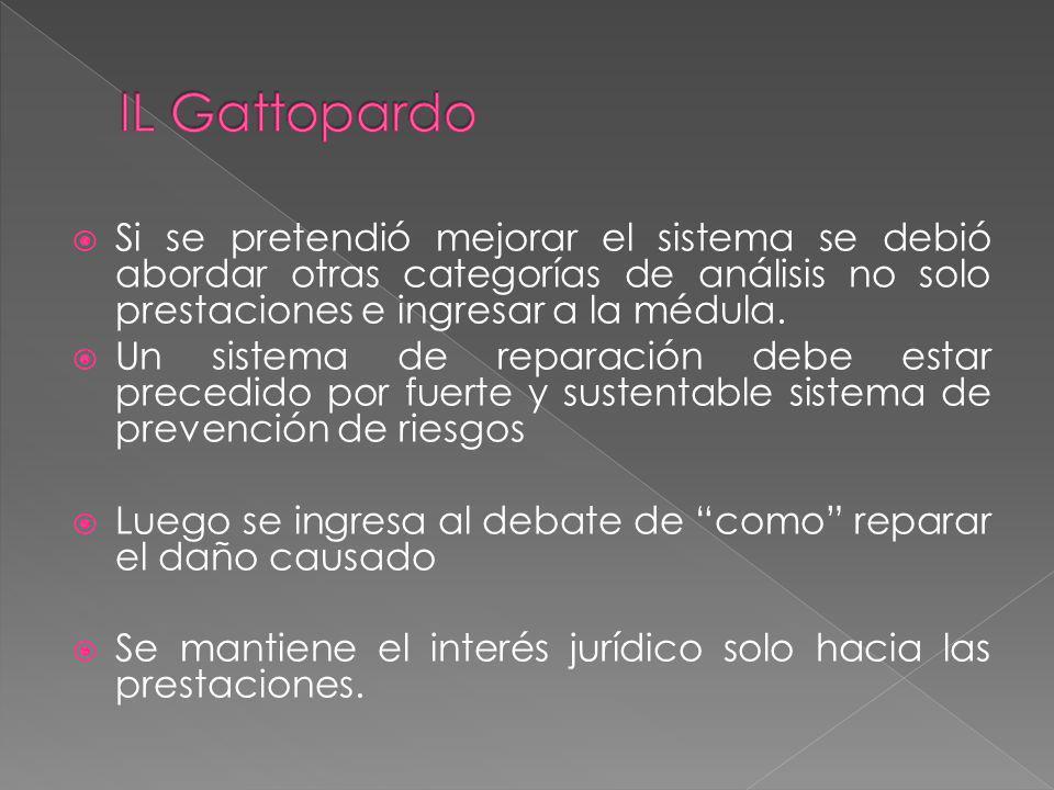 IL Gattopardo Si se pretendió mejorar el sistema se debió abordar otras categorías de análisis no solo prestaciones e ingresar a la médula.