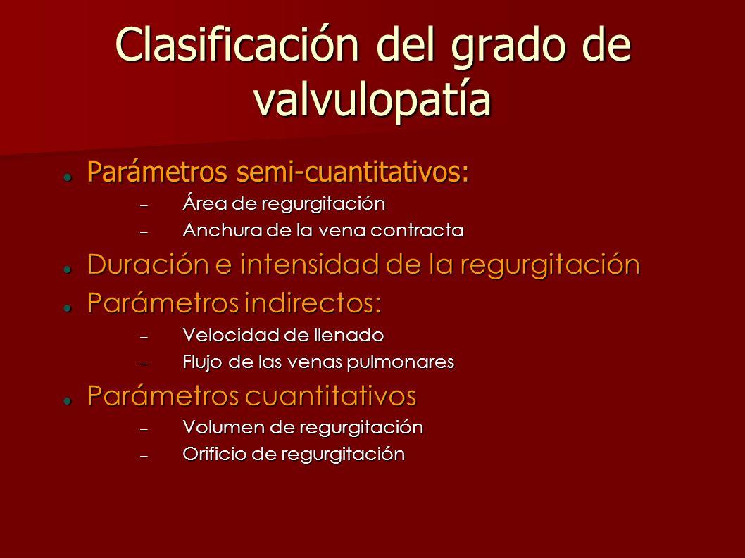 Clasificación del grado de valvulopatía