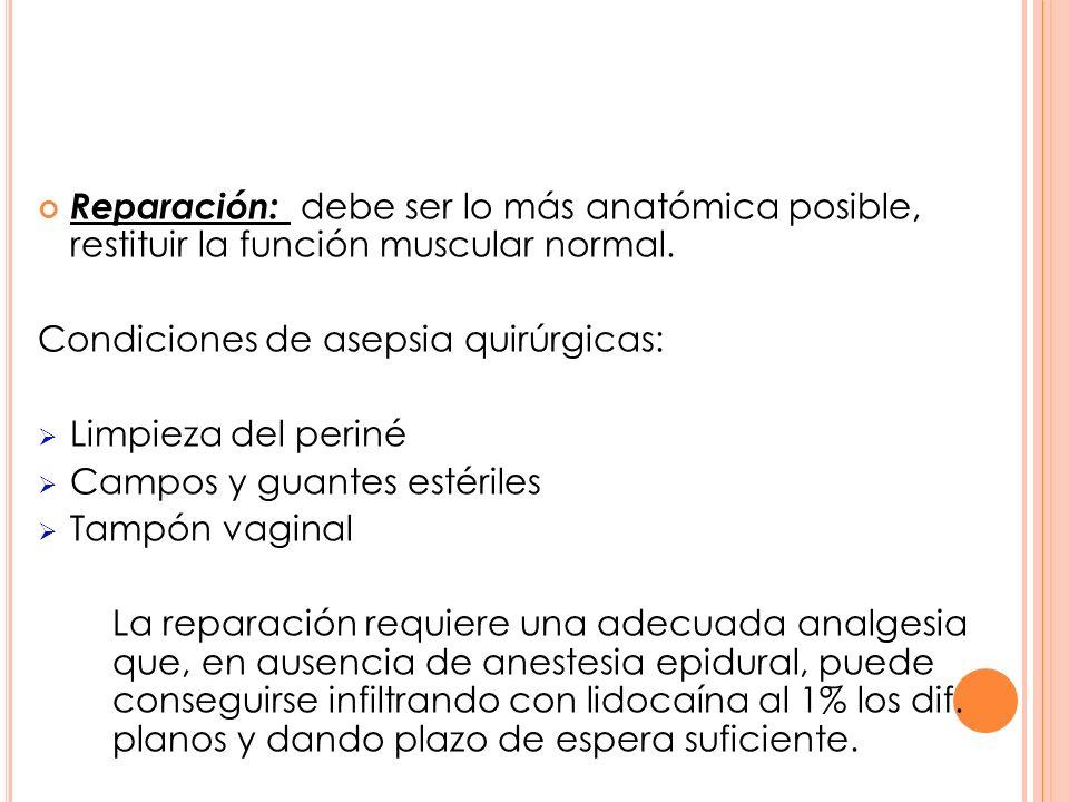 Reparación: debe ser lo más anatómica posible, restituir la función muscular normal.