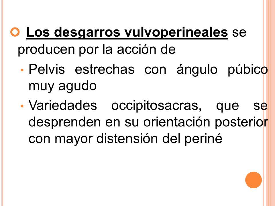 Los desgarros vulvoperineales se producen por la acción de