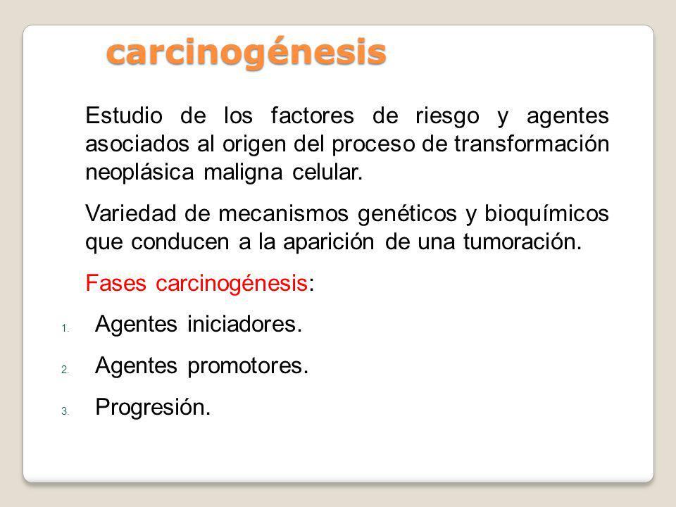 carcinogénesisEstudio de los factores de riesgo y agentes asociados al origen del proceso de transformación neoplásica maligna celular.