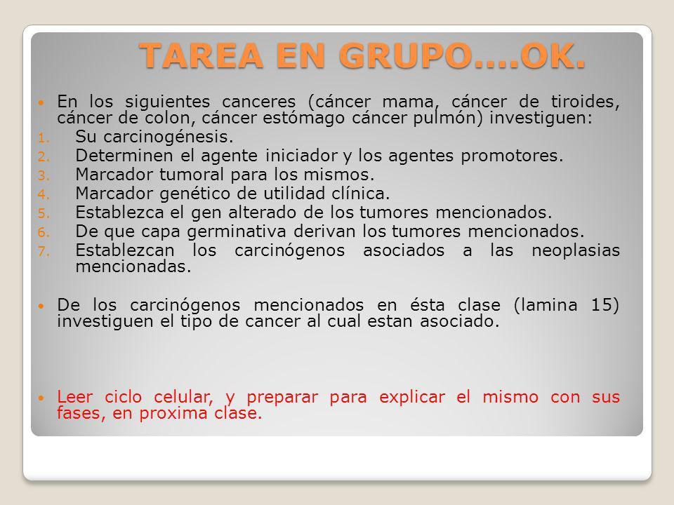 TAREA EN GRUPO….OK.En los siguientes canceres (cáncer mama, cáncer de tiroides, cáncer de colon, cáncer estómago cáncer pulmón) investiguen: