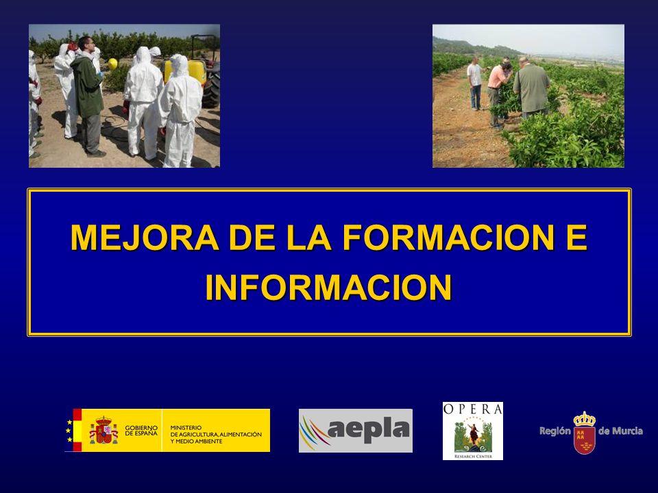 MEJORA DE LA FORMACION E INFORMACION