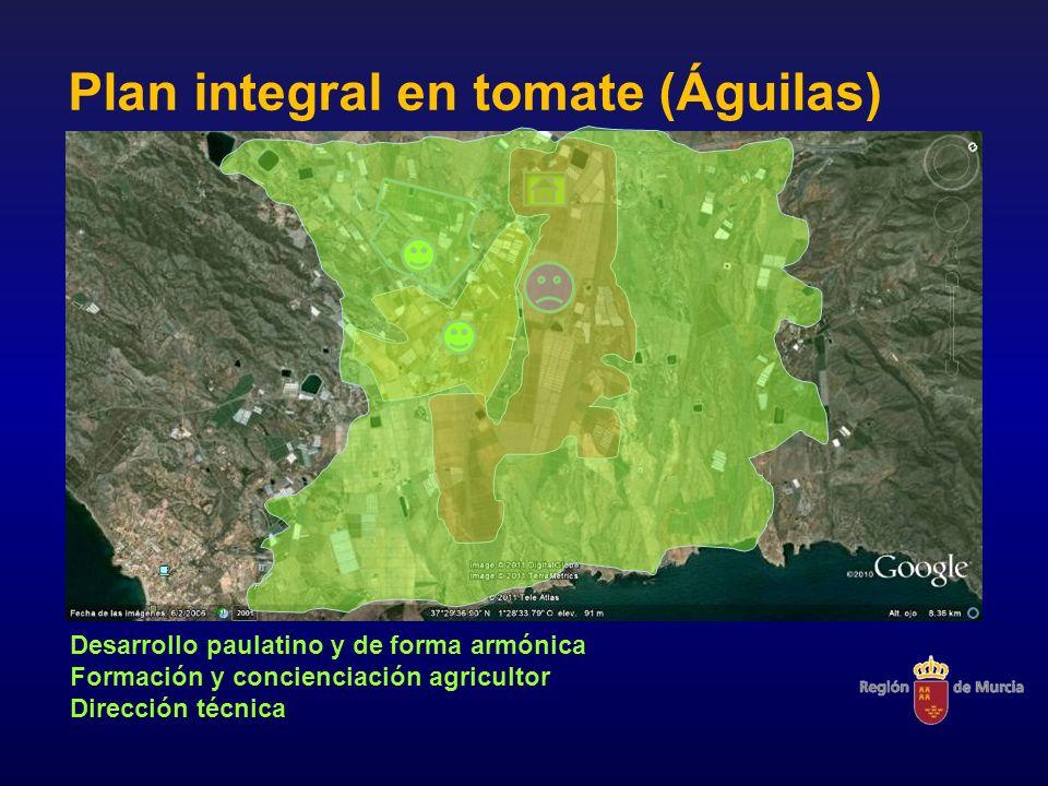 Plan integral en tomate (Águilas)