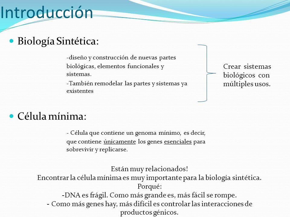Introducción Biología Sintética:
