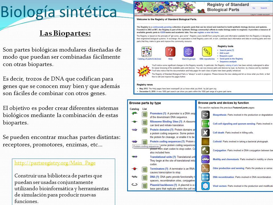 Biología sintética Las Biopartes: