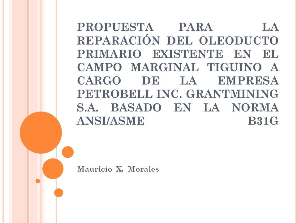 PROPUESTA PARA LA REPARACIÓN DEL OLEODUCTO PRIMARIO EXISTENTE EN EL CAMPO MARGINAL TIGUINO A CARGO DE LA EMPRESA PETROBELL INC. GRANTMINING S.A. BASADO EN LA NORMA ANSI/ASME B31G