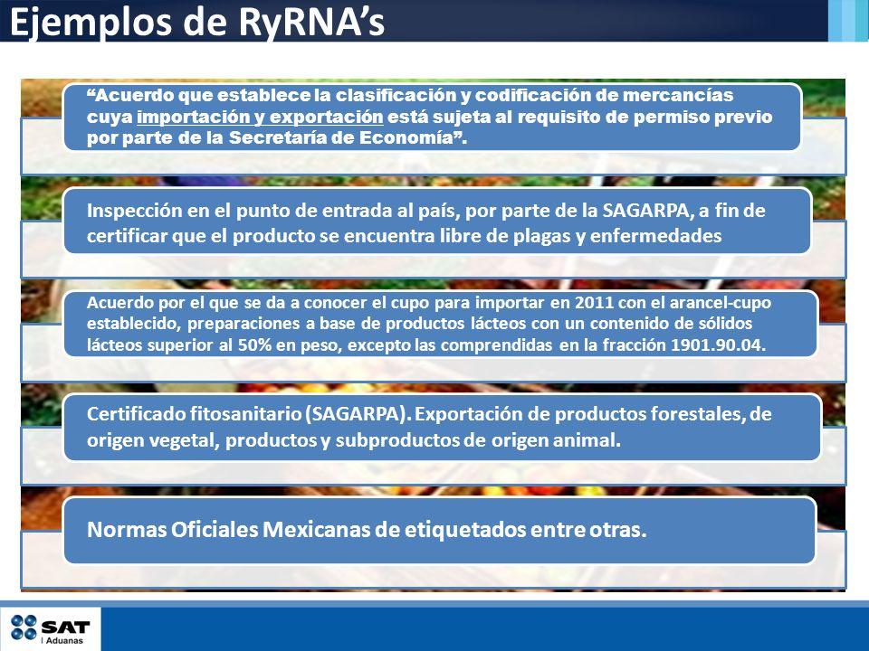 Ejemplos de RyRNA's