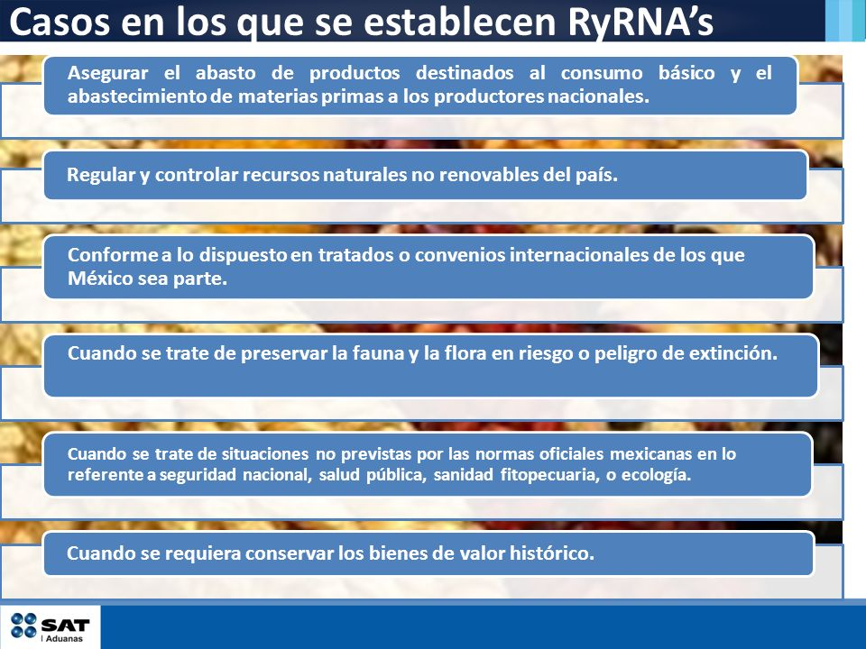 Casos en los que se establecen RyRNA's