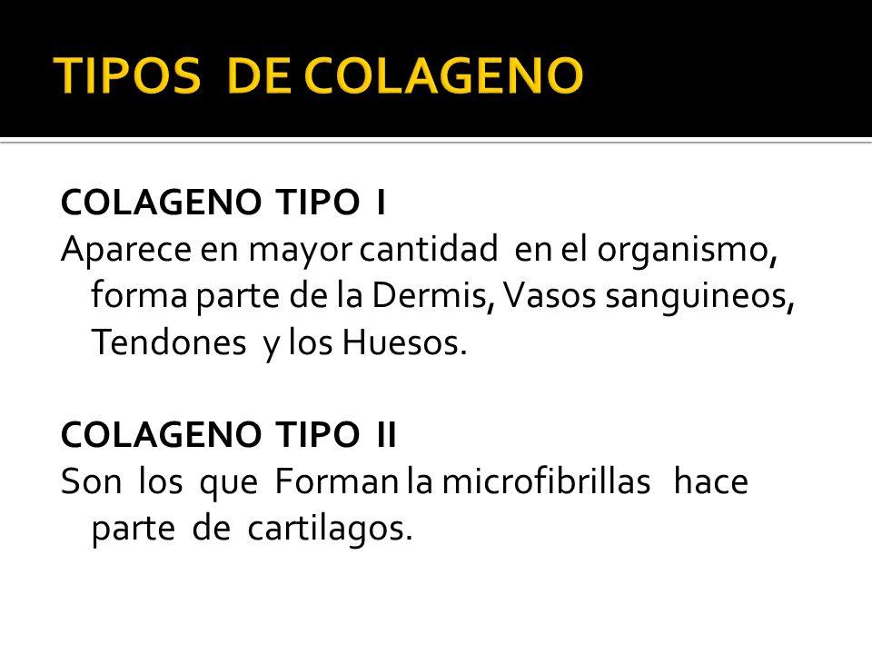 TIPOS DE COLAGENO