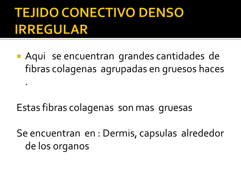 TEJIDO CONECTIVO DENSO IRREGULAR