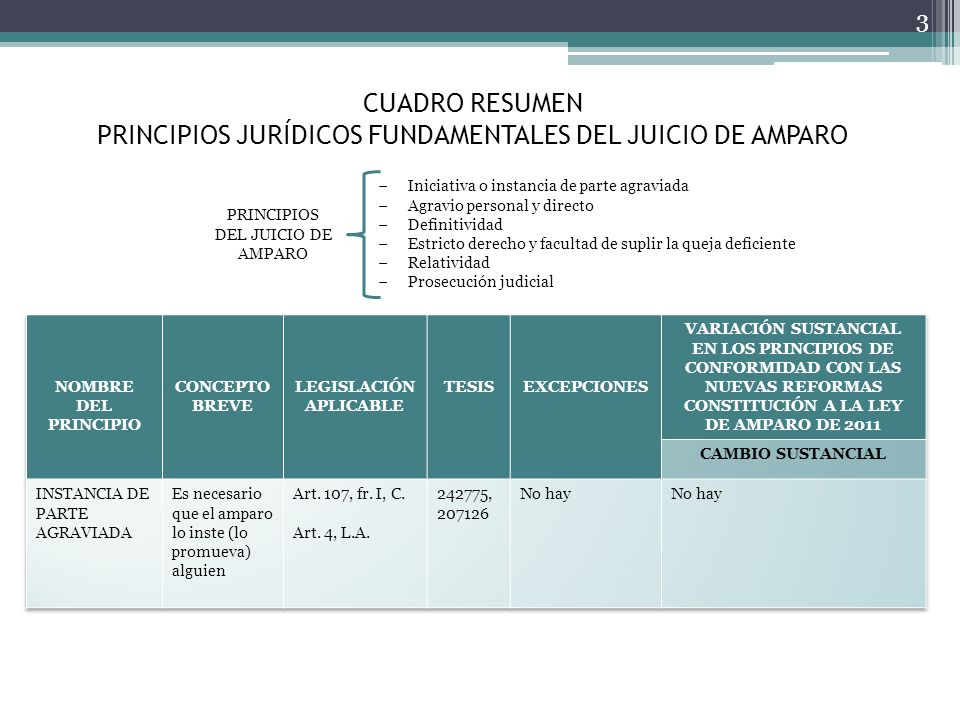 CUADRO RESUMEN PRINCIPIOS JURÍDICOS FUNDAMENTALES DEL JUICIO DE AMPARO