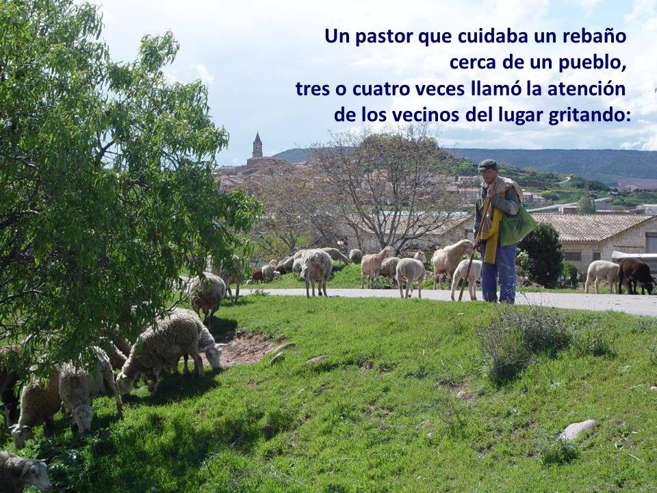 Un pastor que cuidaba un rebaño