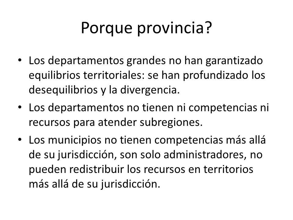 Porque provincia Los departamentos grandes no han garantizado equilibrios territoriales: se han profundizado los desequilibrios y la divergencia.