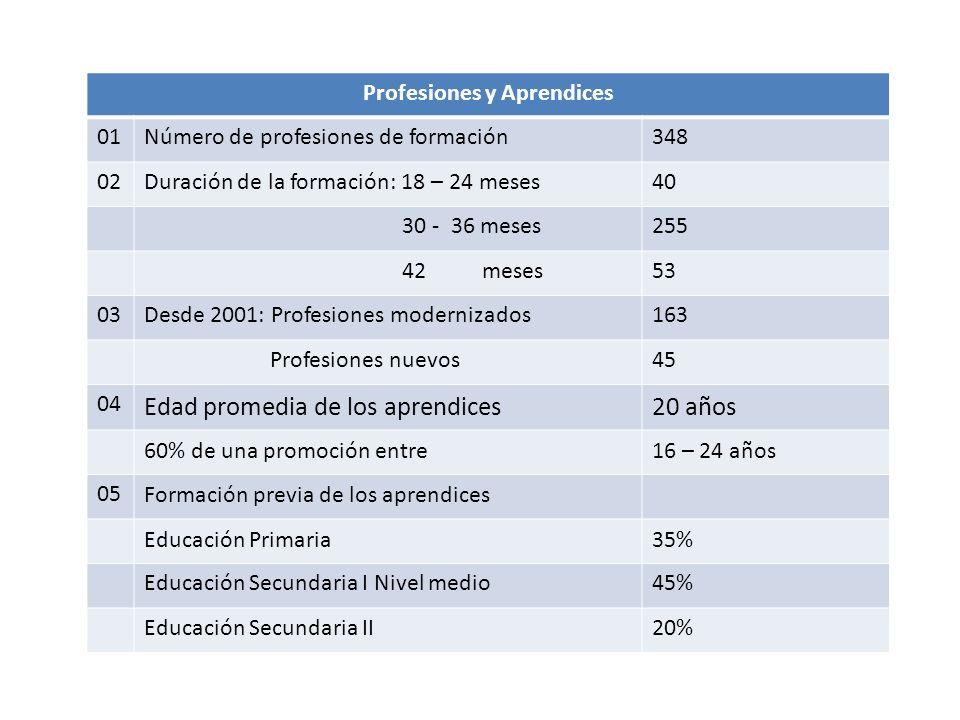 Profesiones y Aprendices