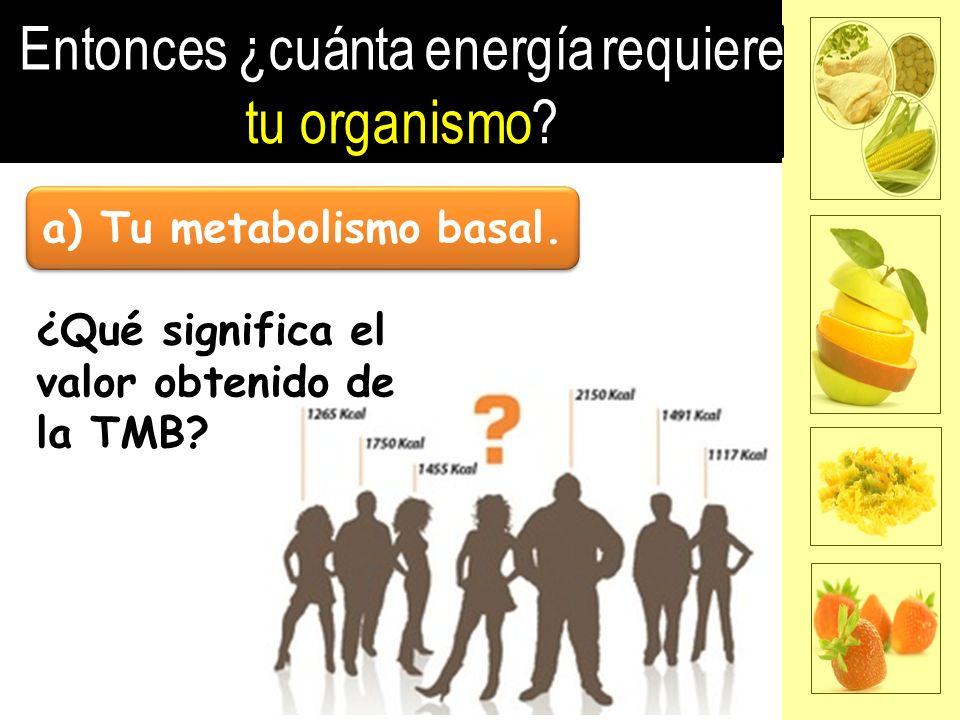 a) Tu metabolismo basal.