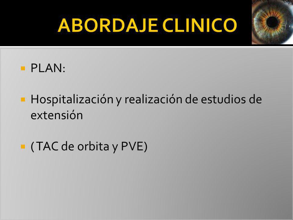 ABORDAJE CLINICO PLAN: