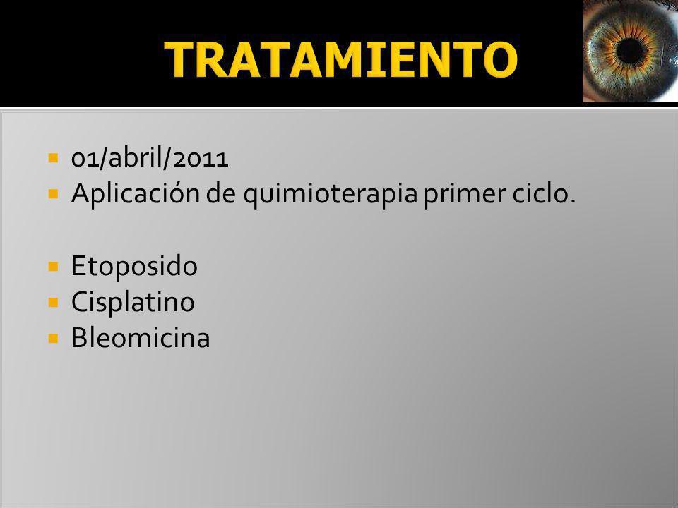 TRATAMIENTO 01/abril/2011 Aplicación de quimioterapia primer ciclo.