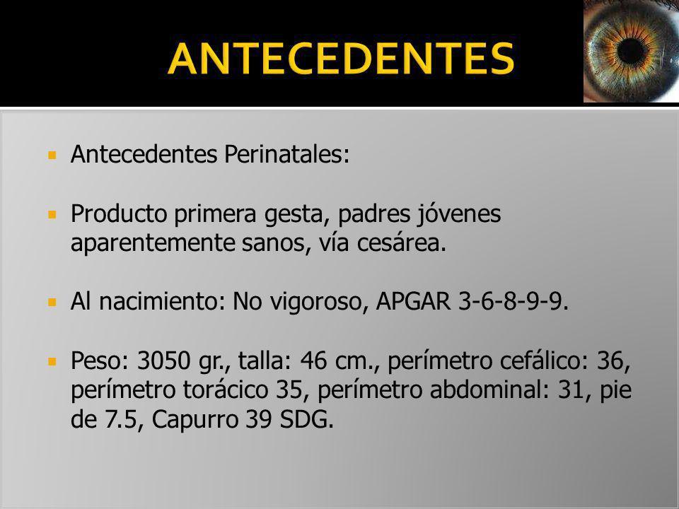 ANTECEDENTES Antecedentes Perinatales: