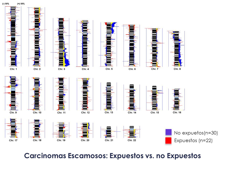 Carcinomas Escamosos: Expuestos vs. no Expuestos