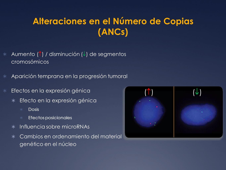 Alteraciones en el Número de Copias (ANCs)