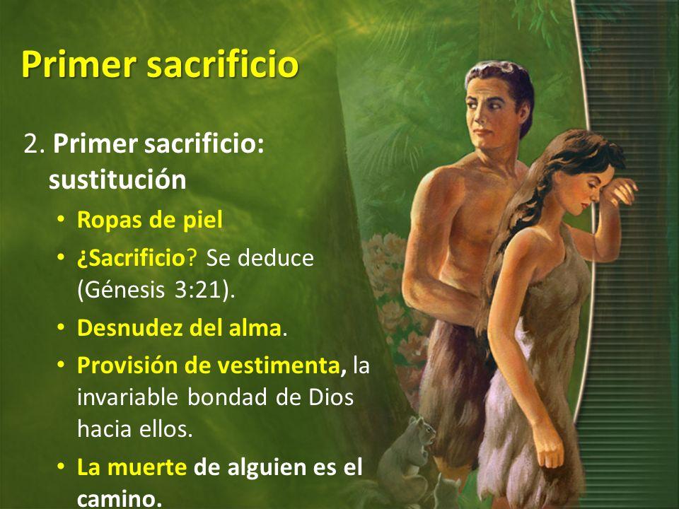 Primer sacrificio 2. Primer sacrificio: sustitución Ropas de piel