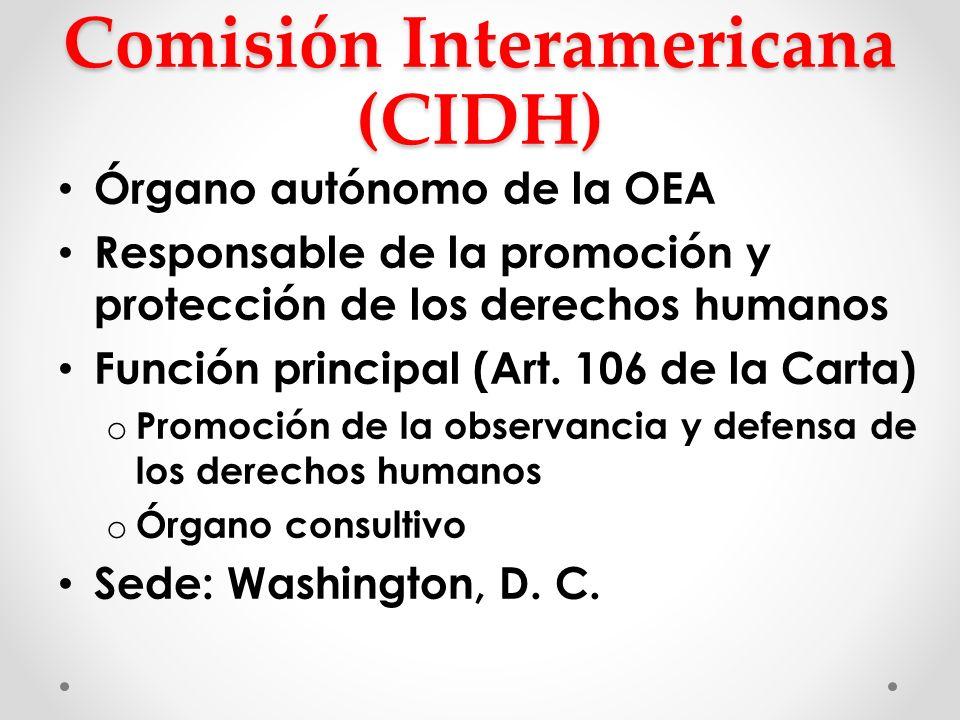 Comisión Interamericana (CIDH)