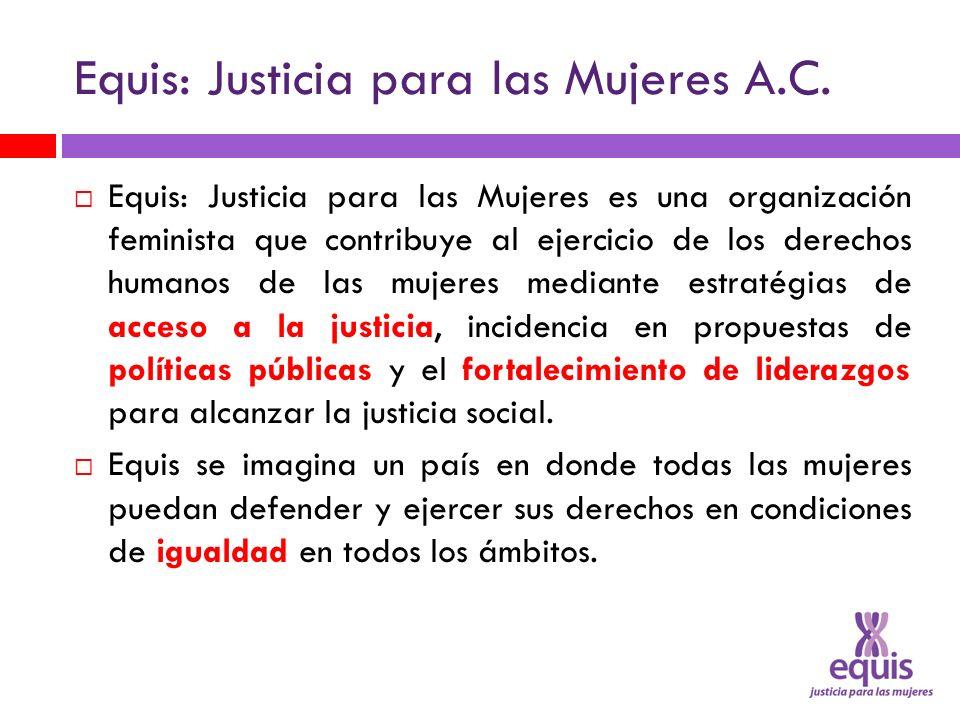 Equis: Justicia para las Mujeres A.C.