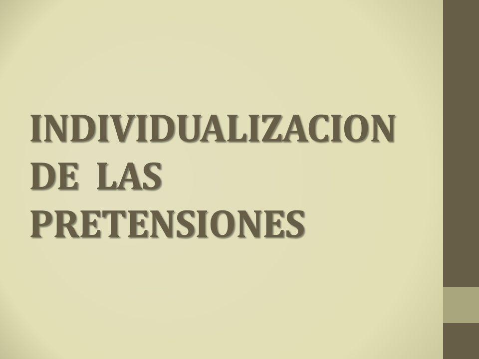 INDIVIDUALIZACION DE LAS PRETENSIONES