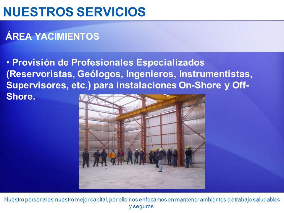 NUESTROS SERVICIOS ÁREA YACIMIENTOS.