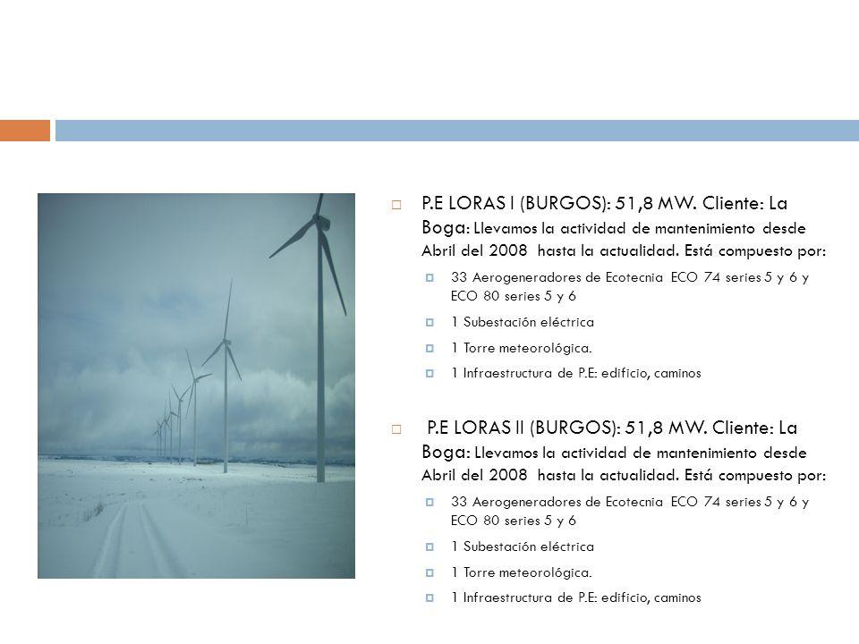 P.E LORAS I (BURGOS): 51,8 MW. Cliente: La Boga: Llevamos la actividad de mantenimiento desde Abril del 2008 hasta la actualidad. Está compuesto por: