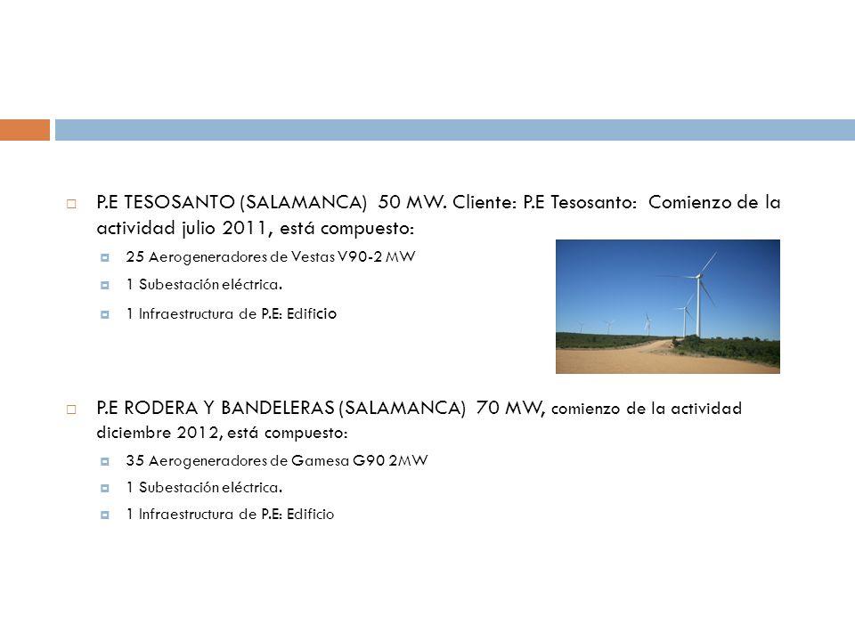 P. E TESOSANTO (SALAMANCA) 50 MW. Cliente: P