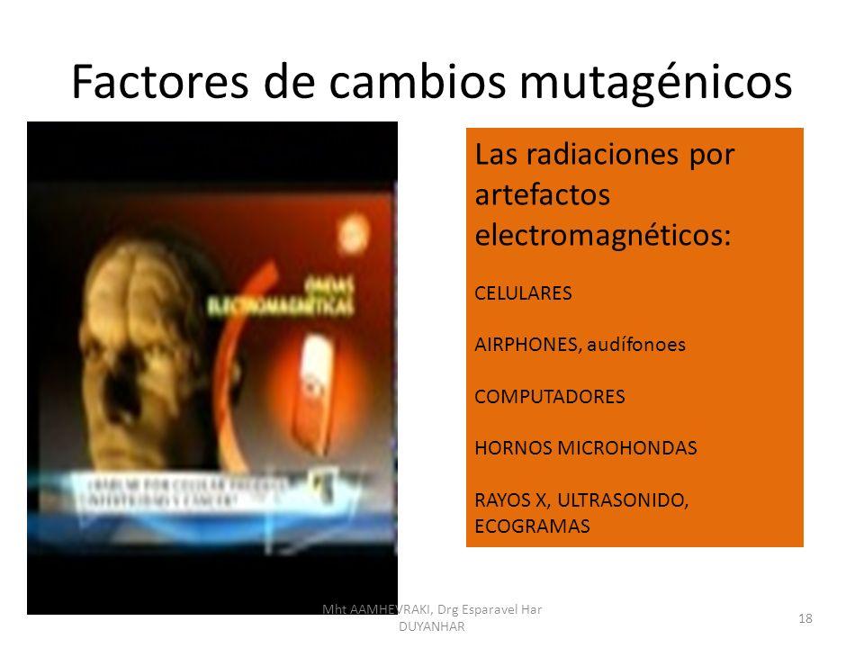 Factores de cambios mutagénicos