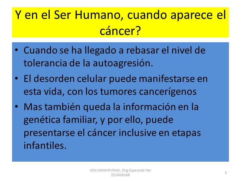 Y en el Ser Humano, cuando aparece el cáncer