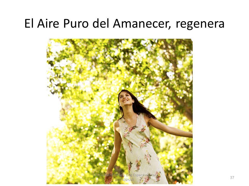 El Aire Puro del Amanecer, regenera