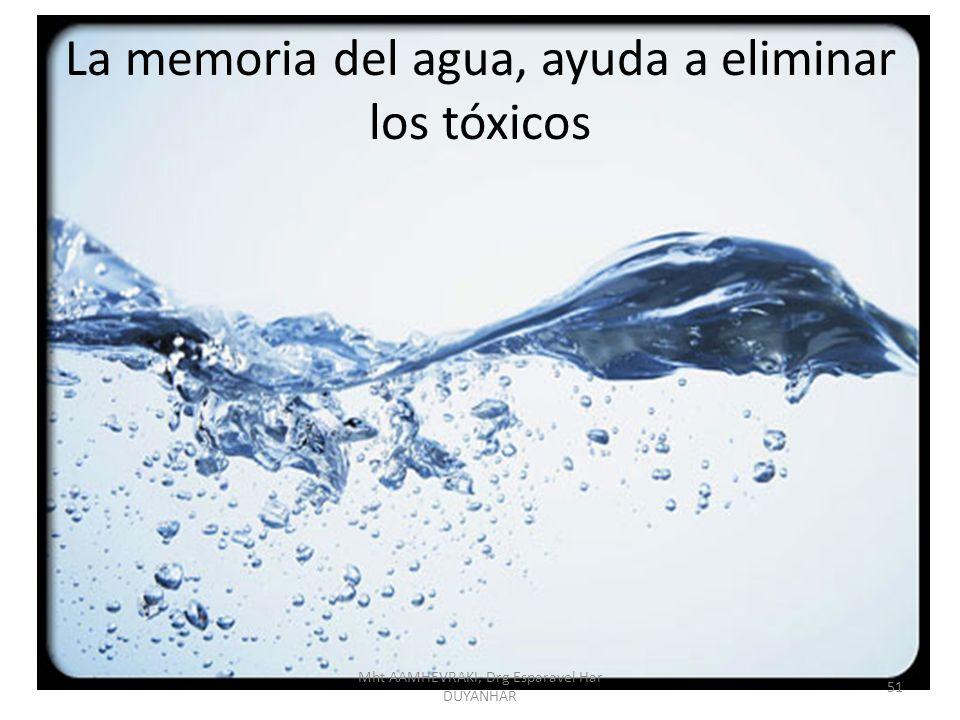 La memoria del agua, ayuda a eliminar los tóxicos