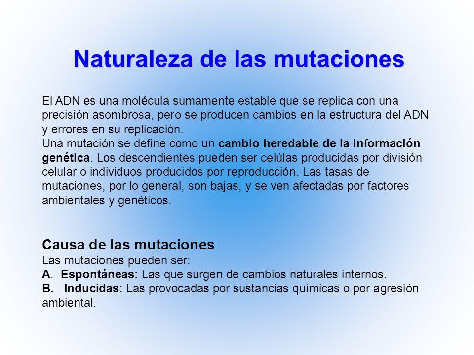 Naturaleza de las mutaciones