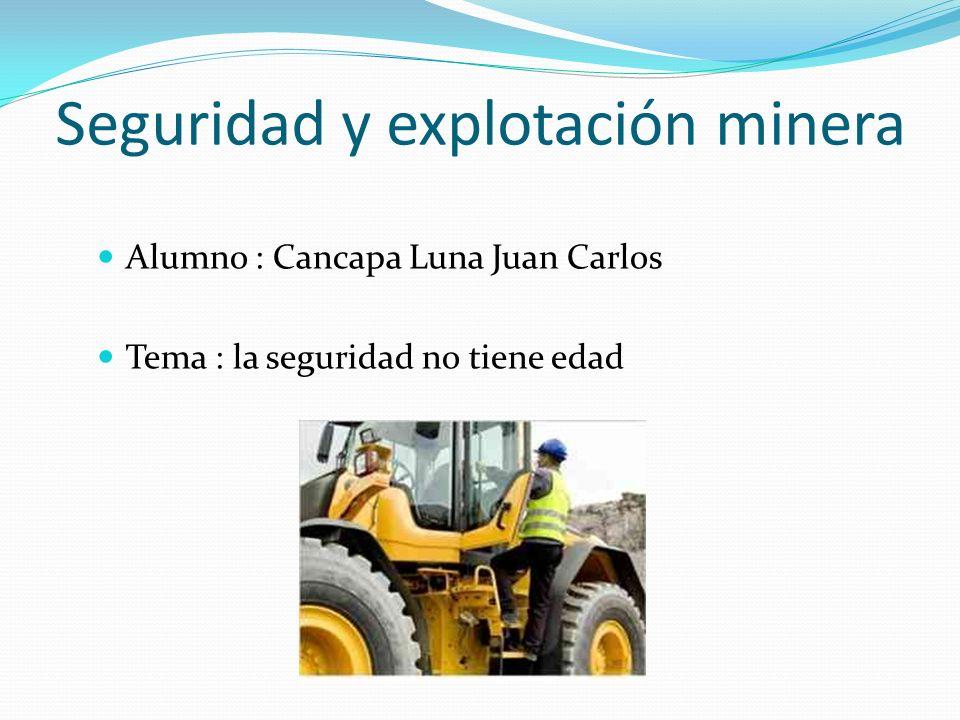 Seguridad y explotación minera